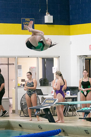 HS Sports - Downriver League Girls Diving