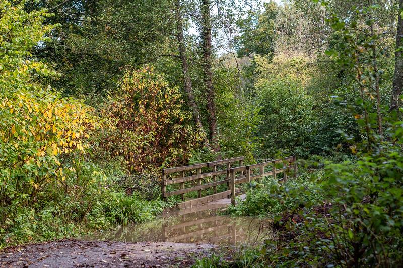 500_Woods-Mill-4008.jpg