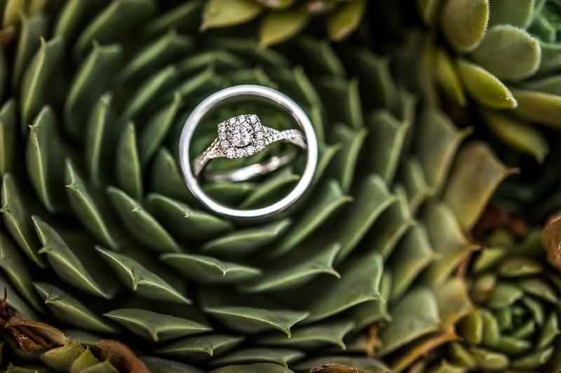 Vanessa Farmer wedding day-1032.jpg