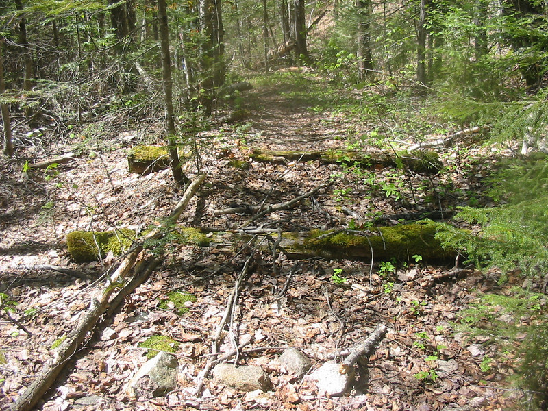 Old railroad ties on the Cedar Brook Trail