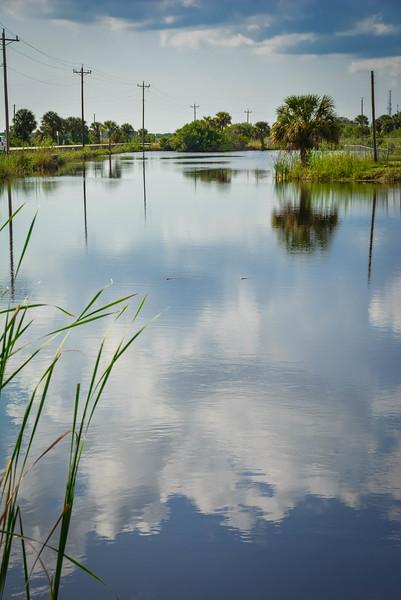 Everglades-37.jpg