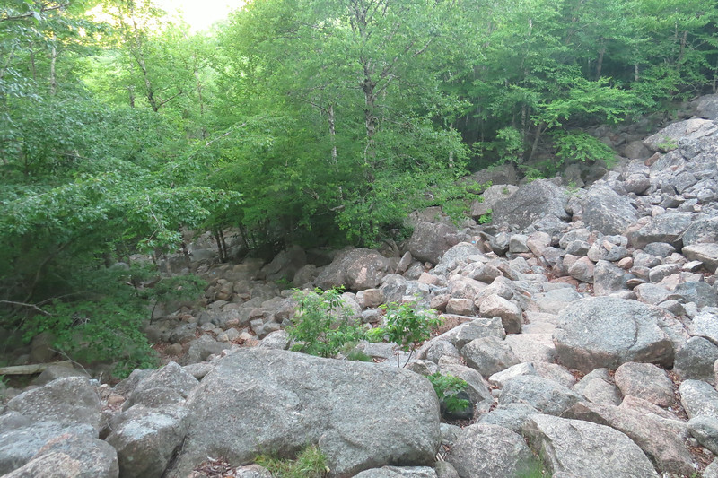 Rough and steep climb out of Bubbles Divide.JPG