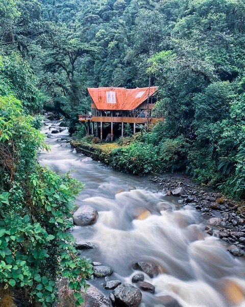 An abandoned eco-lodge high in the Manu cloud forests