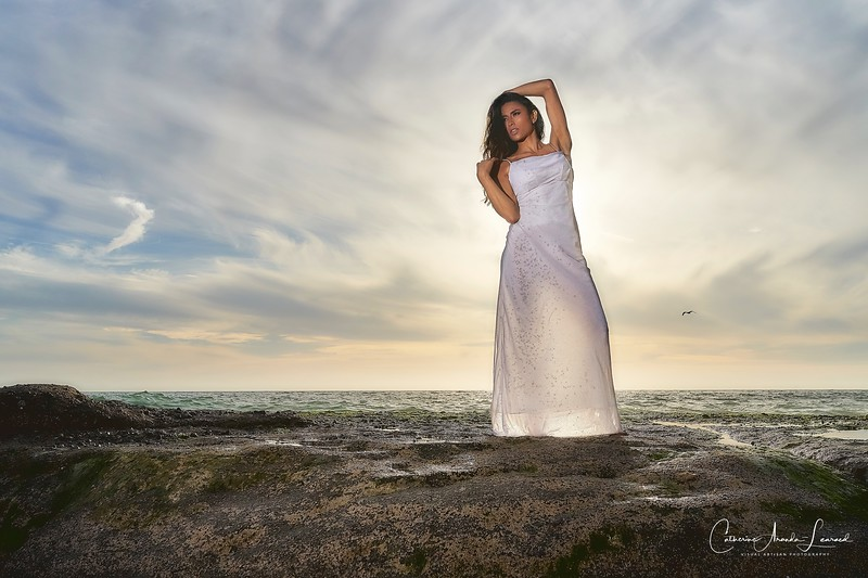 _DSC16500098@Catherine Aranda-LearnedOceanRomance©CAL.©CAL.jpg