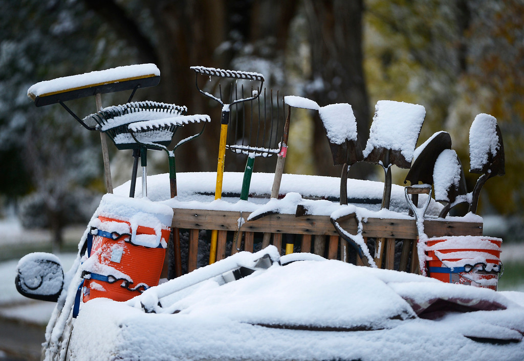 . Snow covered shovels and rakes in the back of a truck near Eudora St. and Yale Ave Friday morning, October 18, 2013.  (Photo By Andy Cross/The Denver Post)