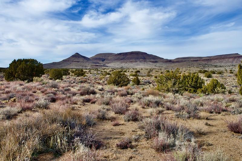 Mohave National Preserve landscape