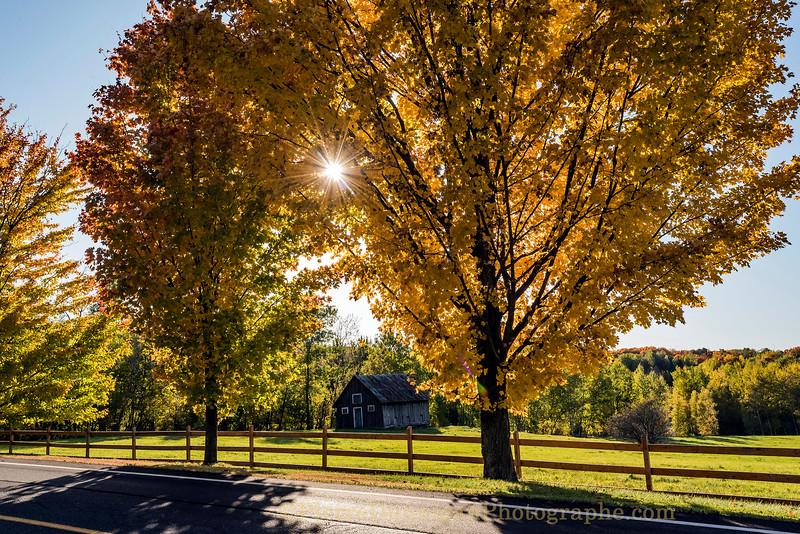 automne  couleurs