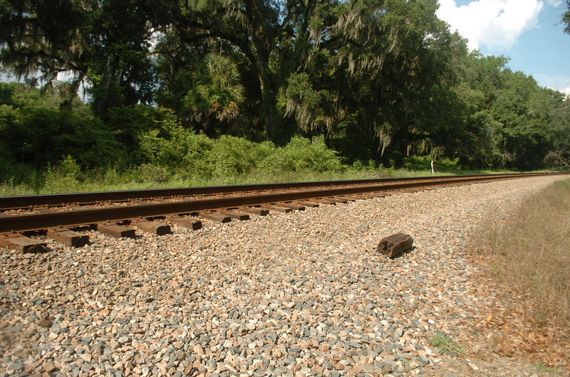 Bill's Trail's west end is roughly 100m eastward across the tracks.