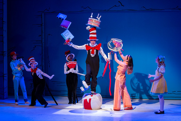 Cat in the Hat-Performance