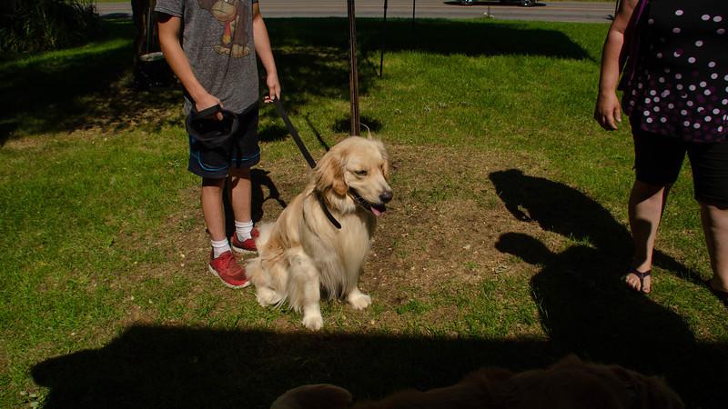 PuppyParty18-13.jpg