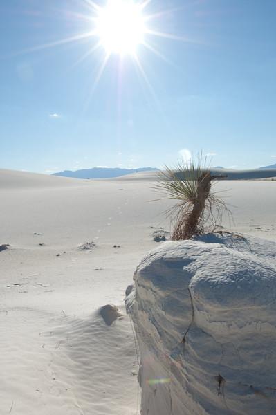 20081007 White Sands 049.jpg