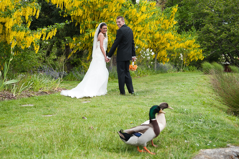 Roth Wedding-315.jpg