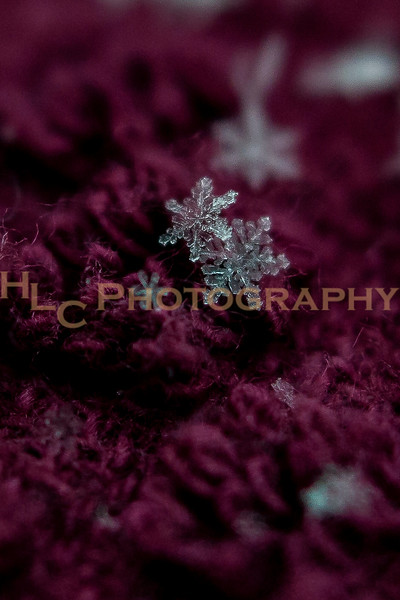 021119 Snowflakes