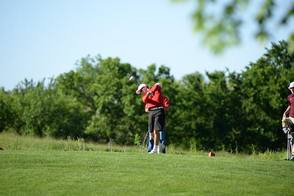 2015 Boys State Golf