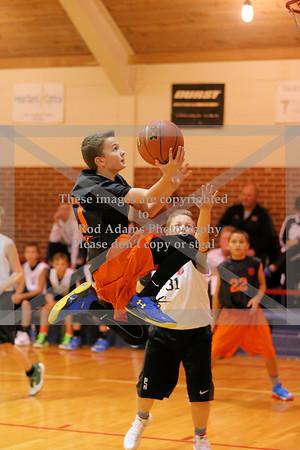 Small Fry Basketball