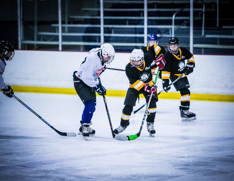 Bruins2-84.jpg