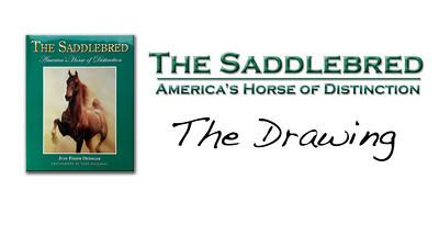 Saddlebredbook Contest winners