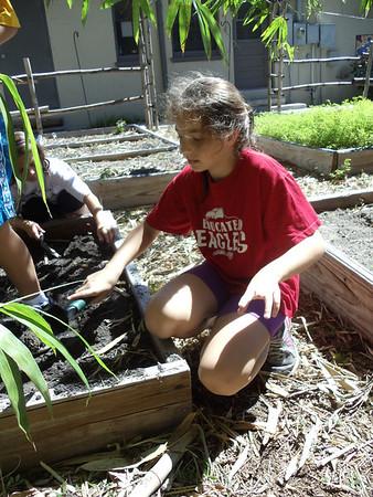 5th grade Gardening October 2011
