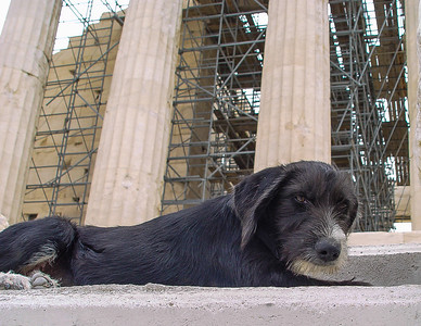 Athens, Greece, September 28, 2003