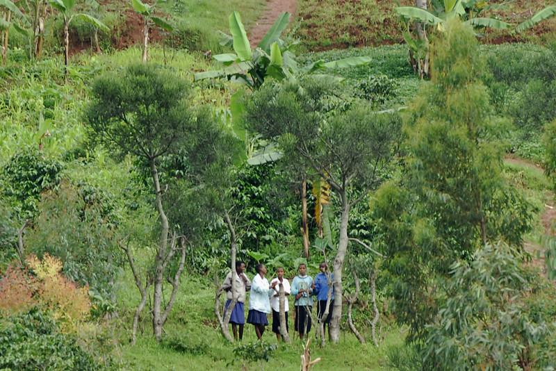 070116 4571-C Burundi - on the road to Source of the Nile _E _L ~E ~L.JPG