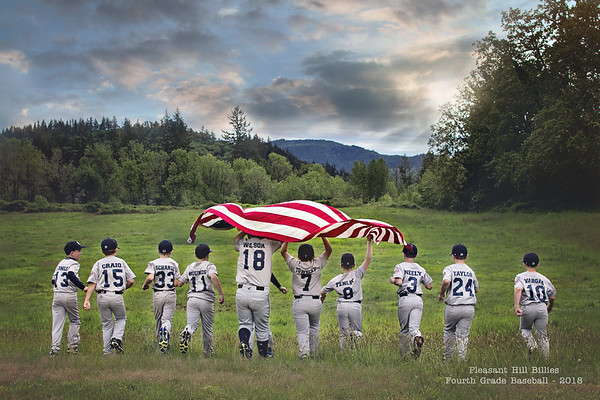 MemBrant Baseball Teams 2018