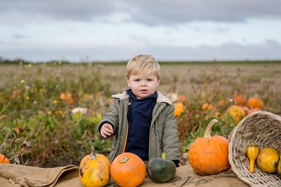 Elliot - Pumpkin Mini 2019