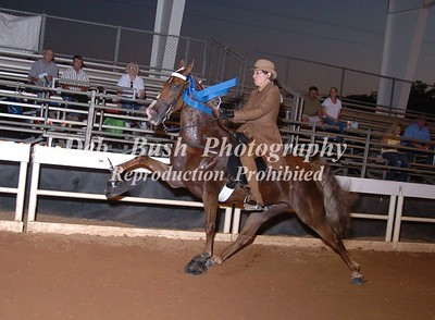 CLASS 25  PONY - ADULT RIDER SPECIALTY