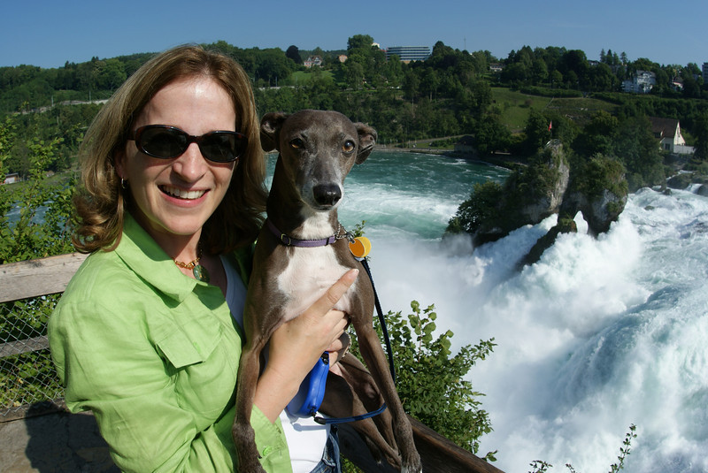 This is Rhine Falls, the largest waterfall in europe.