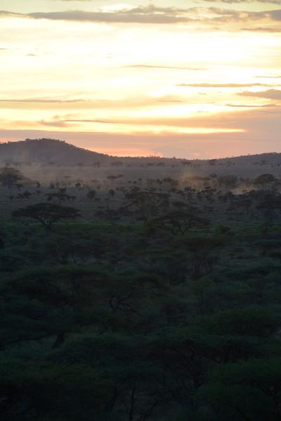 East Africa Safari 370.jpg