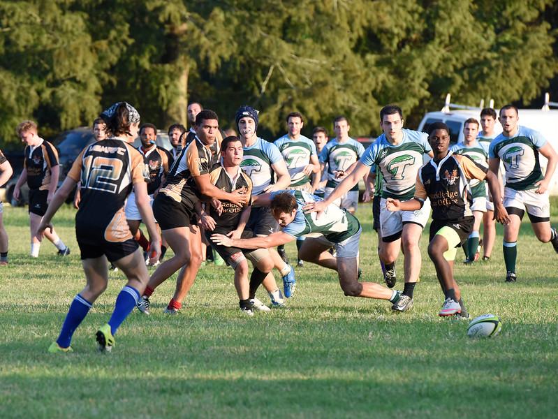 Tulane Rugby 2016 300.JPG