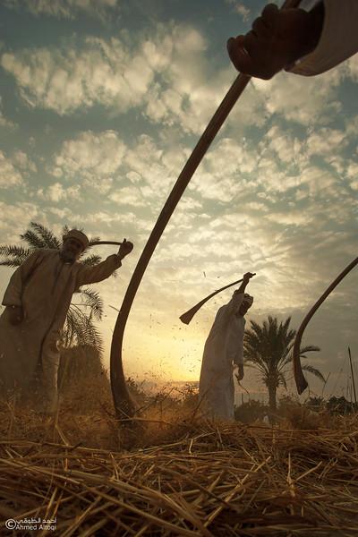 Traditional Handicrafts (41)- Oman.jpg