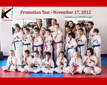 KH Kim Taekwondo - Plainfield Div. - Promotion Test November 17
