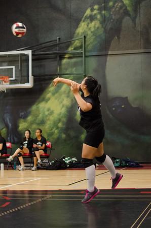 2013 Senior Girls Volleyball