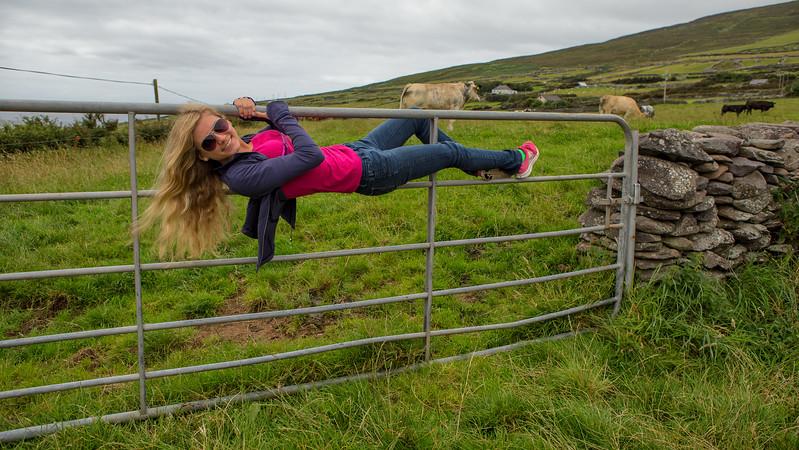 Ireland 2014-0868-Edit.jpg