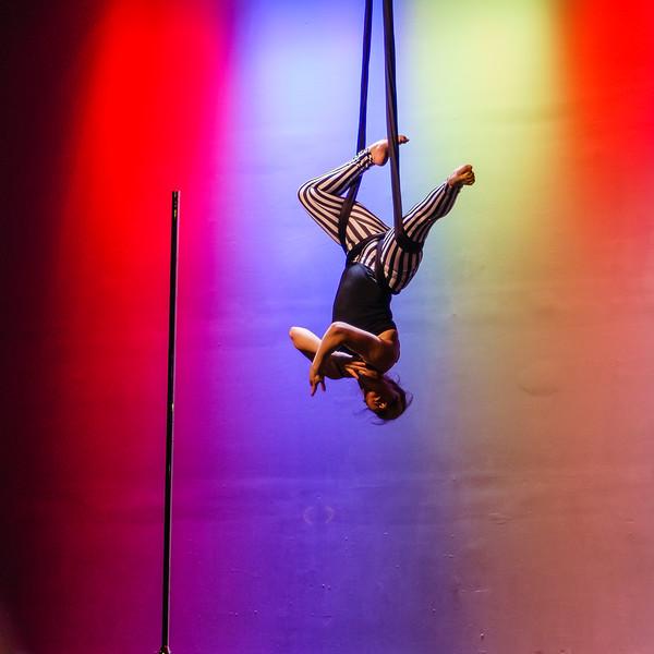 Kairos Circus Benefit-20150109-302.jpg