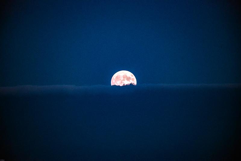 Moon Dizinv.jpg