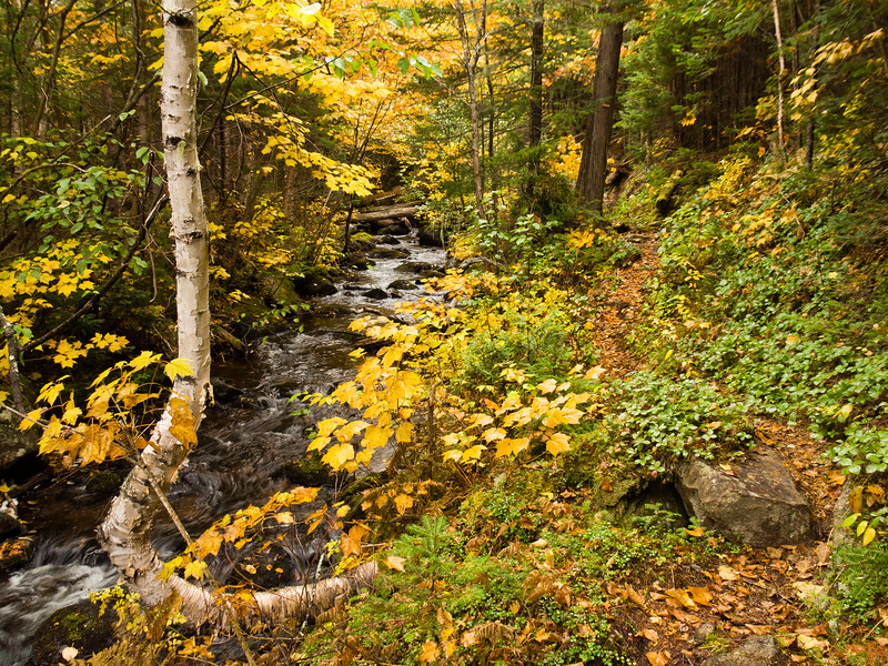 Sentier & ruisseau