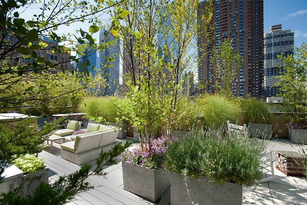 new-york_roof-top-garden_hells-kitchen-penthouse_big.jpg