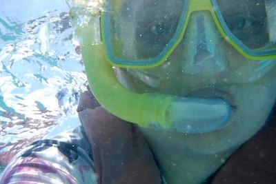 Michaelmas Cay Snorkel Trip - photos taken in the water