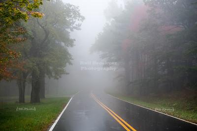 USA, VA - Skyline Drive, Shenandoah National Park