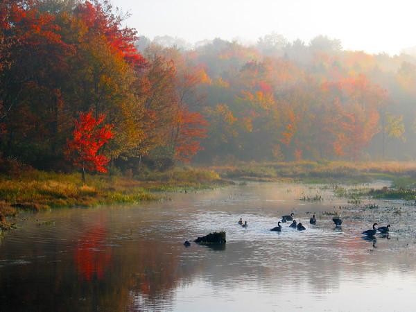 Briscoe Lake (34605741).jpg