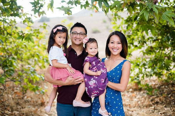 Nguyen Family 2018