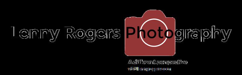 Lenny Rogers dot com-logo transparent-X3.png
