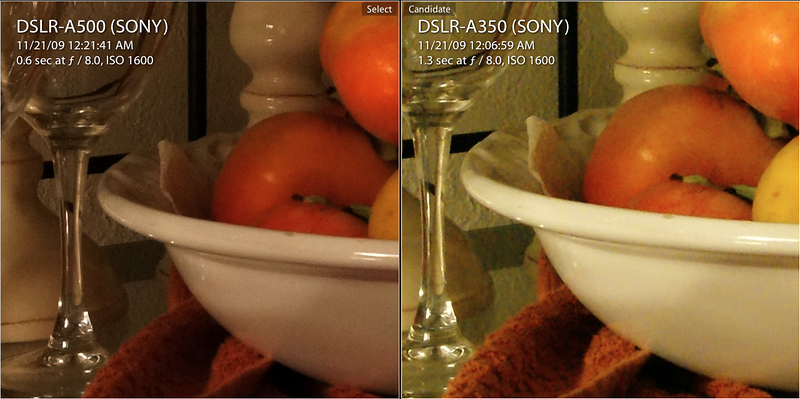 a500 vs a350 iso 1600 in cam jpg.png