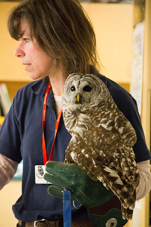 "Jen with ""Pokey"", a Barred Owl."