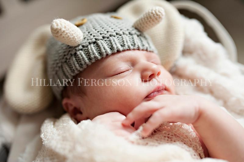 Hillary_Ferguson_Photography_Carlynn_Newborn022.jpg