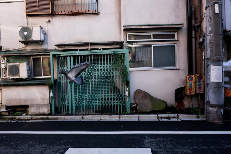 2019-12-21 Japan-573.jpg