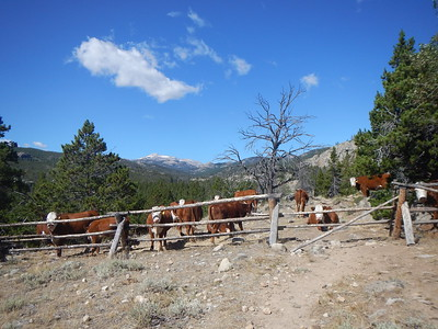 August 28-Sept 6 Wind River High Route