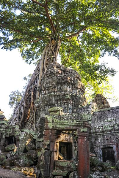 Cambodia-2018-9220.jpg