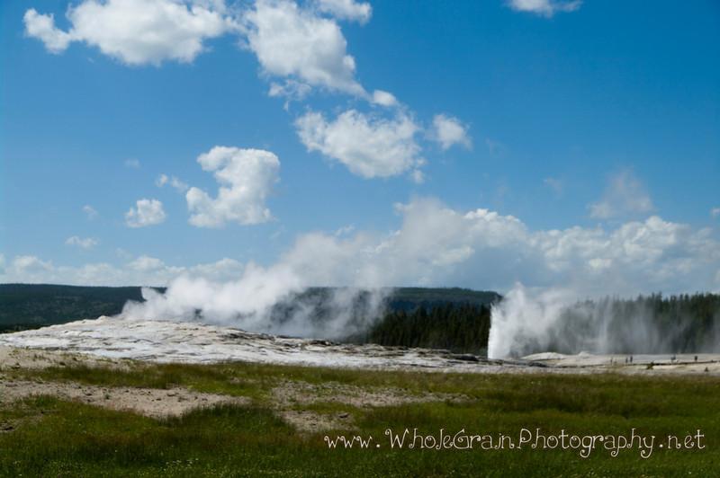 20100712_Yellowstone_3067.jpg